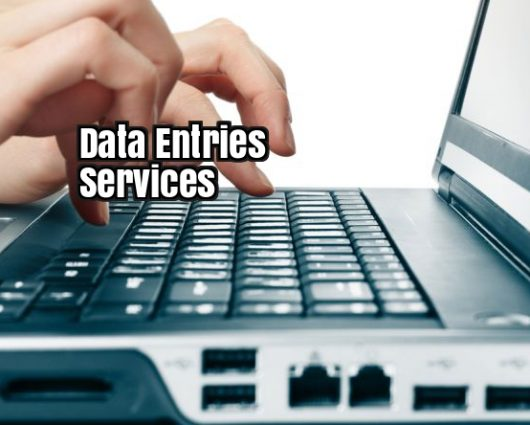 Services-Others-Data Entries